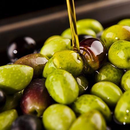 Aceites de oliva elaborados a partir de aceitunas de la más alta calidad