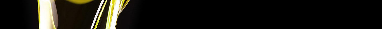 Aceite de oliva Encinas Montequinto